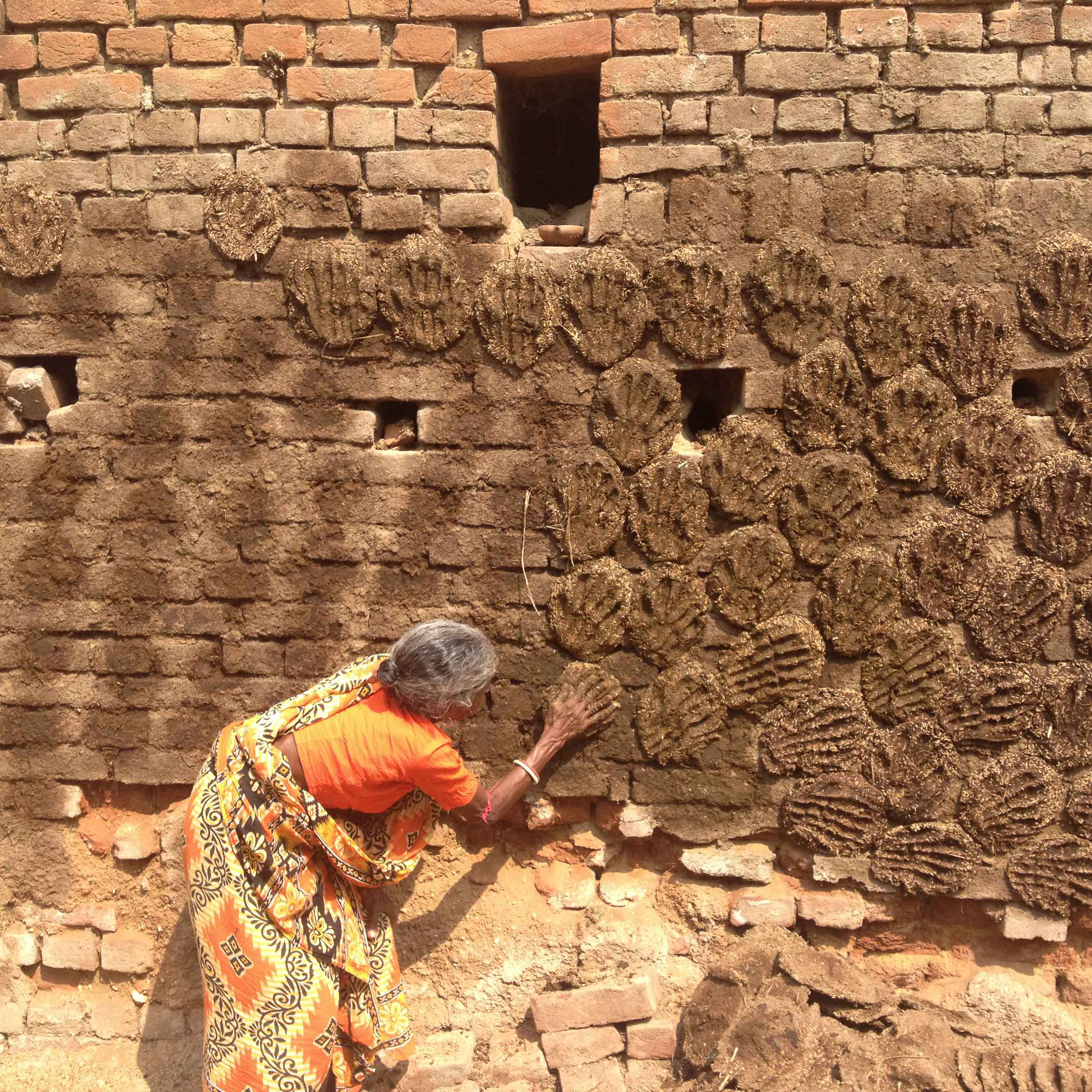 Cowpats-on-wall-Dabar-India-2